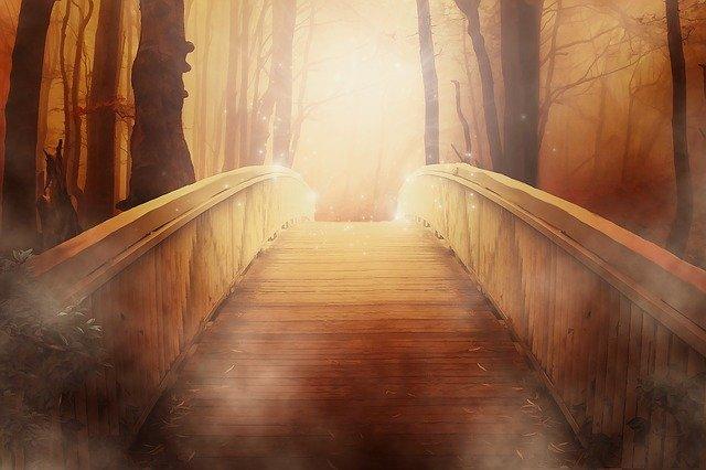 Un puente hacia la claridad
